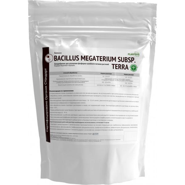 Bacillus megaterium Organic